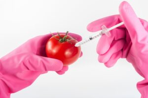 gmo food technology